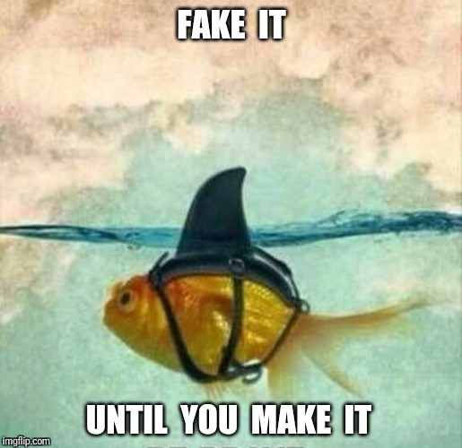 The best way to meme. | FAKE  IT UNTIL  YOU  MAKE  IT | image tagged in goldfish shark,memes,goldfish | made w/ Imgflip meme maker