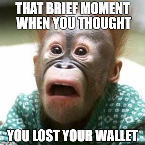 Scared monkey | THAT BRIEF MOMENT WHEN YOU THOUGHT YOU LOST YOUR WALLET | image tagged in scared monkey | made w/ Imgflip meme maker