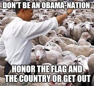 obama sheep | DON'T BE AN OBAMA-NATION HONOR THE FLAG AND  THE COUNTRY OR GET OUT | image tagged in obama sheep | made w/ Imgflip meme maker