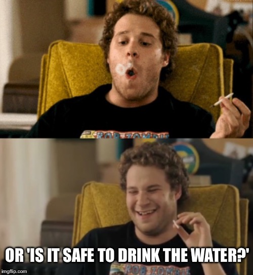 Seth Rogan | OR 'IS IT SAFE TO DRINK THE WATER?' | image tagged in seth rogan | made w/ Imgflip meme maker