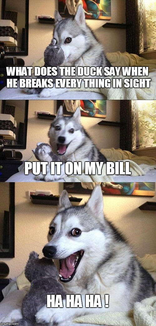 Bad Pun Dog Meme | WHAT DOES THE DUCK SAY WHEN HE BREAKS EVERY THING IN SIGHT PUT IT ON MY BILL HA HA HA ! | image tagged in memes,bad pun dog | made w/ Imgflip meme maker