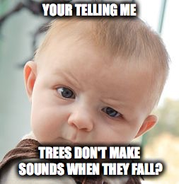 Skeptical Baby Meme | YOUR TELLING ME TREES DON'T MAKE SOUNDS WHEN THEY FALL? | image tagged in memes,skeptical baby | made w/ Imgflip meme maker