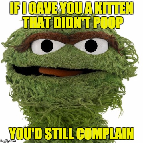 Oscar The Grouch | IF I GAVE YOU A KITTEN THAT DIDN'T POOP YOU'D STILL COMPLAIN | image tagged in oscar the grouch | made w/ Imgflip meme maker