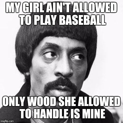ike turner | MY GIRL AIN'T ALLOWED TO PLAY BASEBALL ONLY WOOD SHE ALLOWED TO HANDLE IS MINE | image tagged in ike turner | made w/ Imgflip meme maker