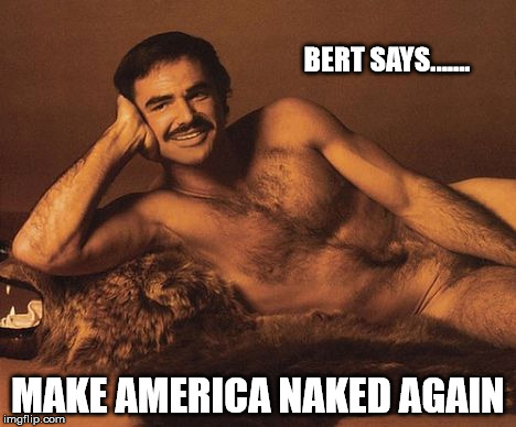 BERT SAYS....... MAKE AMERICA NAKED AGAIN | image tagged in naked bury | made w/ Imgflip meme maker