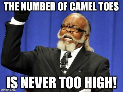 Too Damn High Meme | THE NUMBER OF CAMEL TOES IS NEVER TOO HIGH! | image tagged in memes,too damn high | made w/ Imgflip meme maker