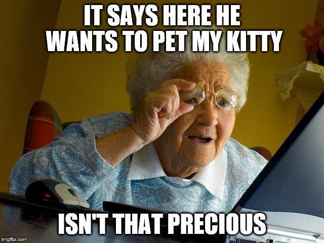 Grandma Finds The Internet Meme | IT SAYS HERE HE WANTS TO PET MY KITTY ISN'T THAT PRECIOUS | image tagged in memes,grandma finds the internet | made w/ Imgflip meme maker
