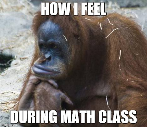 Me in Math Class |  HOW I FEEL; DURING MATH CLASS | image tagged in math,how i feel,monkey,orangutan,bored,funny memes | made w/ Imgflip meme maker