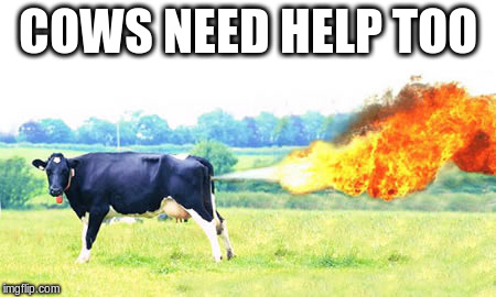 COWS NEED HELP TOO | made w/ Imgflip meme maker