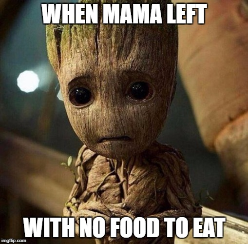 Emotion of hunger | WHEN MAMA LEFT WITH NO FOOD TO EAT | image tagged in guardians of the galaxy vol 2,netflix | made w/ Imgflip meme maker
