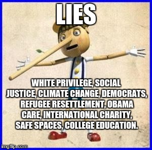Lies | LIES WHITE PRIVILEGE, SOCIAL JUSTICE, CLIMATE CHANGE, DEMOCRATS, REFUGEE RESETTLEMENT, OBAMA CARE, INTERNATIONAL CHARITY, SAFE SPACES, COLLE | image tagged in lies | made w/ Imgflip meme maker