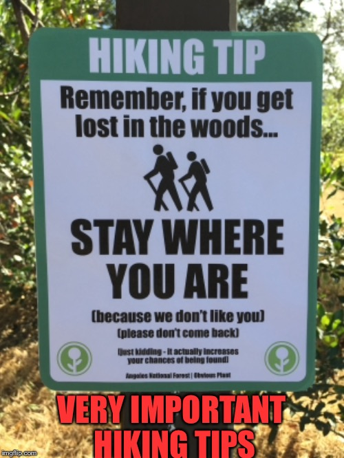 Hiking tips | VERY IMPORTANT HIKING TIPS | image tagged in hiking,woods,stay where you are,lost | made w/ Imgflip meme maker