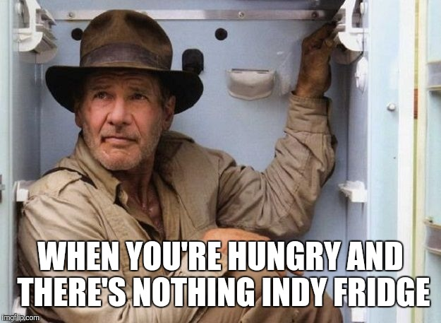 Nuking the meme  | WHEN YOU'RE HUNGRY AND THERE'S NOTHING INDY FRIDGE | image tagged in memes | made w/ Imgflip meme maker