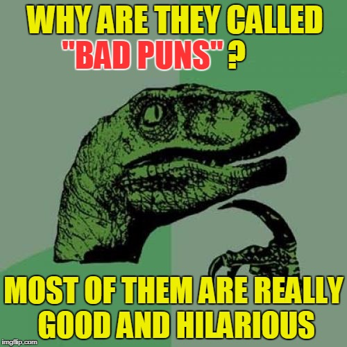 "Philosoraptor | WHY ARE THEY CALLED                    ? MOST OF THEM ARE REALLY GOOD AND HILARIOUS ""BAD PUNS"" 