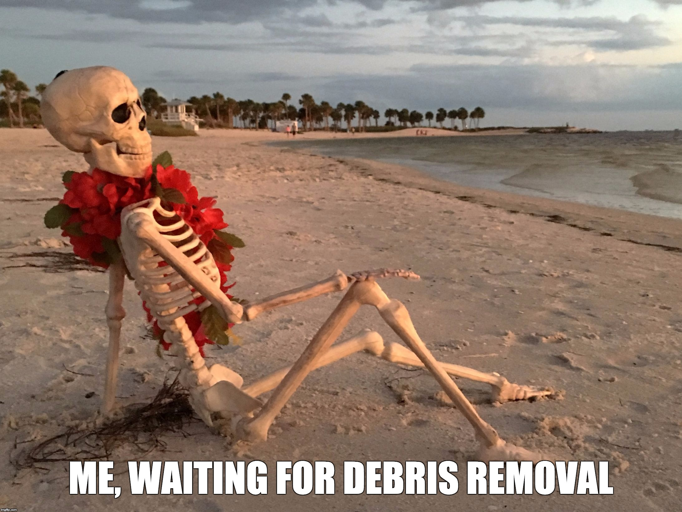 ME, WAITING FOR DEBRIS REMOVAL | image tagged in waiting | made w/ Imgflip meme maker