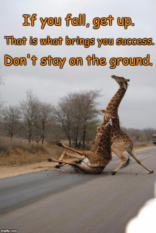Falling Giraffe | If you fall, get up. Don't stay on the ground. That is what brings you success. | image tagged in falling giraffe | made w/ Imgflip meme maker