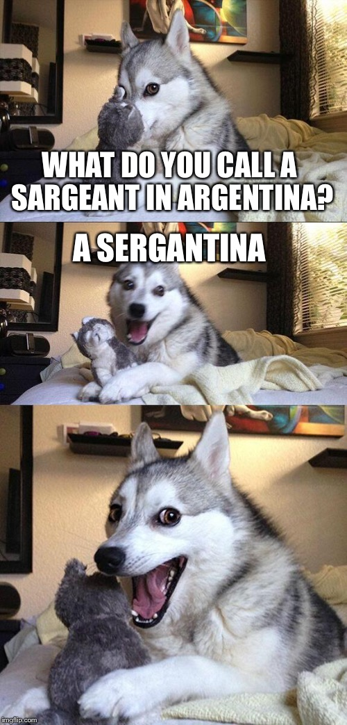 Bad Pun Dog Meme | WHAT DO YOU CALL A SARGEANT IN ARGENTINA? A SERGANTINA | image tagged in memes,bad pun dog | made w/ Imgflip meme maker