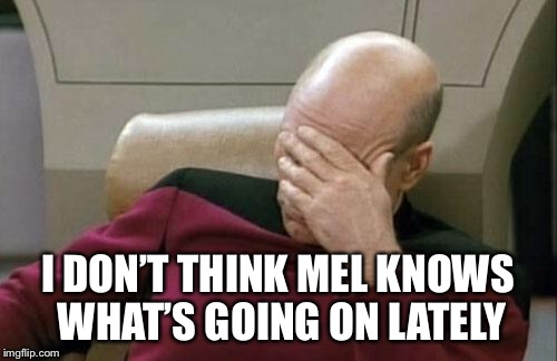 Captain Picard Facepalm Meme | I DON'T THINK MEL KNOWS WHAT'S GOING ON LATELY | image tagged in memes,captain picard facepalm | made w/ Imgflip meme maker