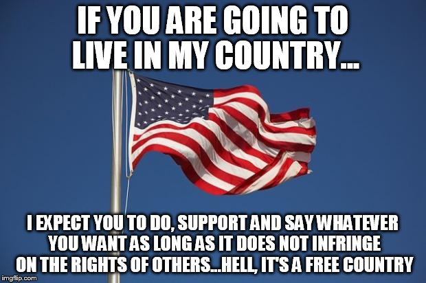 US Flag | IF YOU ARE GOING TO LIVE IN MY COUNTRY... I EXPECT YOU TO DO, SUPPORT AND SAY WHATEVER YOU WANT AS LONG AS IT DOES NOT INFRINGE ON THE RIGHT | image tagged in us flag | made w/ Imgflip meme maker