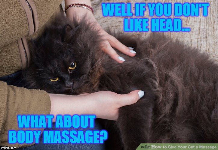 WELL IF YOU DON'T LIKE HEAD... WHAT ABOUT BODY MASSAGE? | made w/ Imgflip meme maker