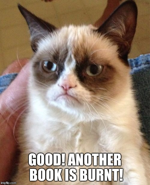 Grumpy Cat Meme | GOOD! ANOTHER BOOK IS BURNT! | image tagged in memes,grumpy cat | made w/ Imgflip meme maker
