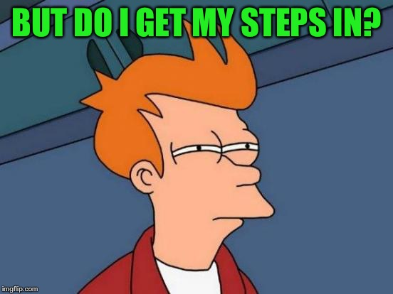 Futurama Fry Meme | BUT DO I GET MY STEPS IN? | image tagged in memes,futurama fry | made w/ Imgflip meme maker