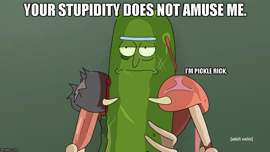 pickle rick | YOUR STUPIDITY DOES NOT AMUSE ME. I'M PICKLE RICK. | image tagged in pickle rick | made w/ Imgflip meme maker