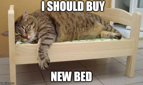 I SHOULD BUY NEW BED | made w/ Imgflip meme maker