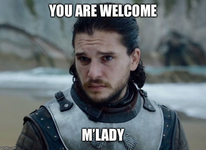 YOU ARE WELCOME M'LADY | made w/ Imgflip meme maker