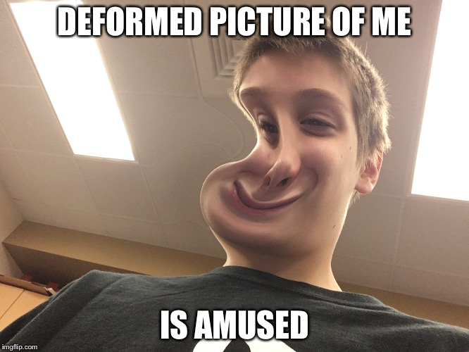 Deformed picture of me |  DEFORMED PICTURE OF ME; IS AMUSED | image tagged in deformed,photo booth,memes | made w/ Imgflip meme maker