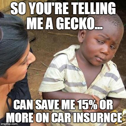 Third World Skeptical Kid Meme | SO YOU'RE TELLING ME A GECKO... CAN SAVE ME 15% OR MORE ON CAR INSURNCE | image tagged in memes,third world skeptical kid | made w/ Imgflip meme maker