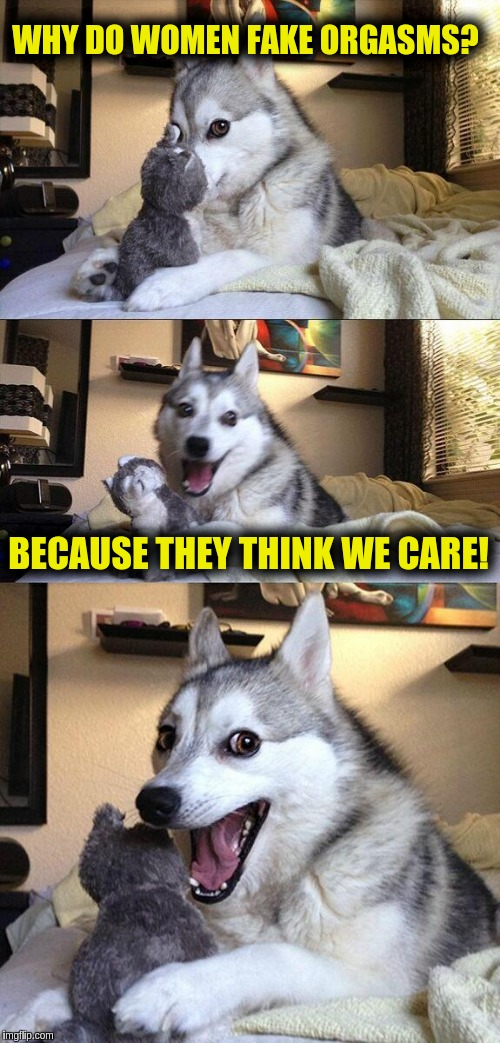 Bad Pun Dog Meme | WHY DO WOMEN FAKE ORGASMS? BECAUSE THEY THINK WE CARE! | image tagged in memes,bad pun dog | made w/ Imgflip meme maker