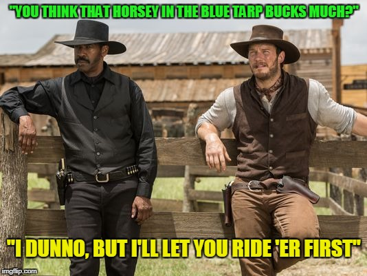"""YOU THINK THAT HORSEY IN THE BLUE TARP BUCKS MUCH?"" ""I DUNNO, BUT I'LL LET YOU RIDE 'ER FIRST"" 