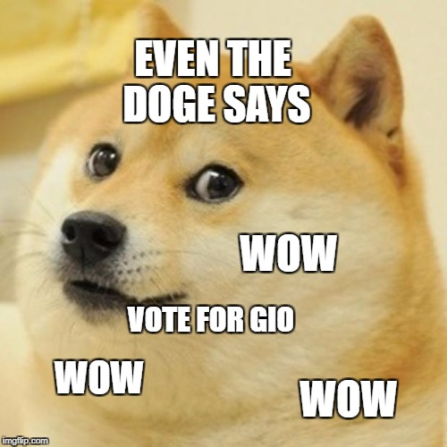 Doge Meme | EVEN THE DOGE SAYS VOTE FOR GIO WOW WOW WOW | image tagged in memes,doge | made w/ Imgflip meme maker
