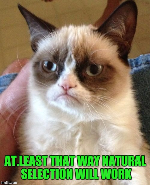 Grumpy Cat Meme | AT.LEAST THAT WAY NATURAL SELECTION WILL WORK | image tagged in memes,grumpy cat | made w/ Imgflip meme maker