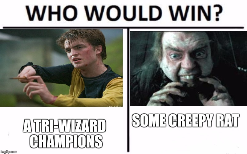 Who Would Win? Meme | SOME CREEPY RAT A TRI-WIZARD CHAMPIONS | image tagged in who would win | made w/ Imgflip meme maker