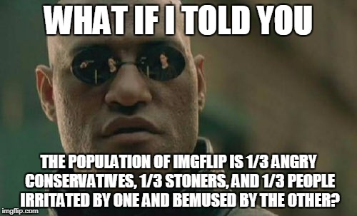 give or take a crazy serial deleter | WHAT IF I TOLD YOU THE POPULATION OF IMGFLIP IS 1/3 ANGRY CONSERVATIVES, 1/3 STONERS, AND 1/3 PEOPLE IRRITATED BY ONE AND BEMUSED BY THE OTH | image tagged in memes,matrix morpheus,imgflip,imgflip users,conservatives,stoners | made w/ Imgflip meme maker