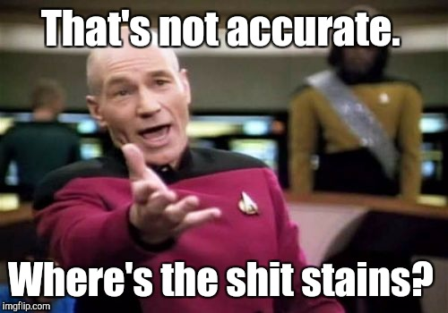 Picard Wtf Meme | That's not accurate. Where's the shit stains? | image tagged in memes,picard wtf | made w/ Imgflip meme maker