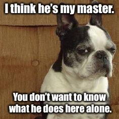 I think he's my master. You don't want to know what he does here alone. | made w/ Imgflip meme maker