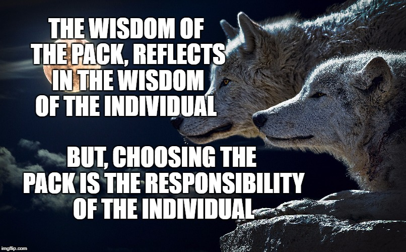The Pack | THE WISDOM OF THE PACK, REFLECTS IN THE WISDOM OF THE INDIVIDUAL BUT, CHOOSING THE PACK IS THE RESPONSIBILITY OF THE INDIVIDUAL | image tagged in wolves,life,motivational,inspirational,deep thoughts,greatness | made w/ Imgflip meme maker