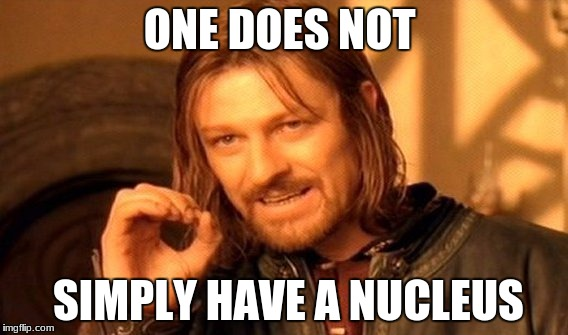 One Does Not Simply Meme | ONE DOES NOT SIMPLY HAVE A NUCLEUS | image tagged in memes,one does not simply | made w/ Imgflip meme maker
