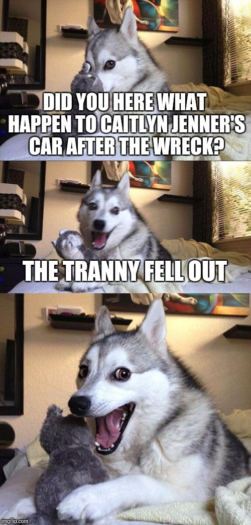 Bad Pun Dog Meme | DID YOU HERE WHAT HAPPEN TO CAITLYN JENNER'S CAR AFTER THE WRECK? THE TRANNY FELL OUT | image tagged in memes,bad pun dog | made w/ Imgflip meme maker
