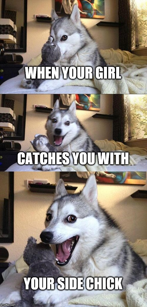 Bad Pun Dog Meme | WHEN YOUR GIRL CATCHES YOU WITH YOUR SIDE CHICK | image tagged in memes,bad pun dog | made w/ Imgflip meme maker