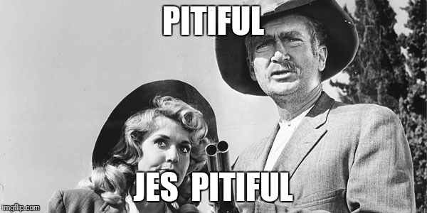 Beverly Hillbillies | PITIFUL JES  PITIFUL | image tagged in beverly hillbillies | made w/ Imgflip meme maker