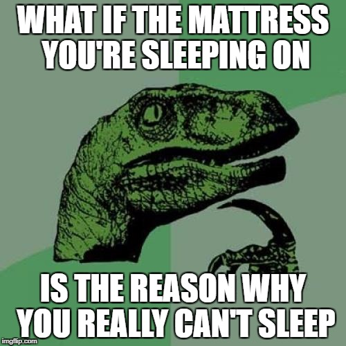 Philosoraptor Meme | WHAT IF THE MATTRESS YOU'RE SLEEPING ON IS THE REASON WHY YOU REALLY CAN'T SLEEP | image tagged in memes,philosoraptor | made w/ Imgflip meme maker
