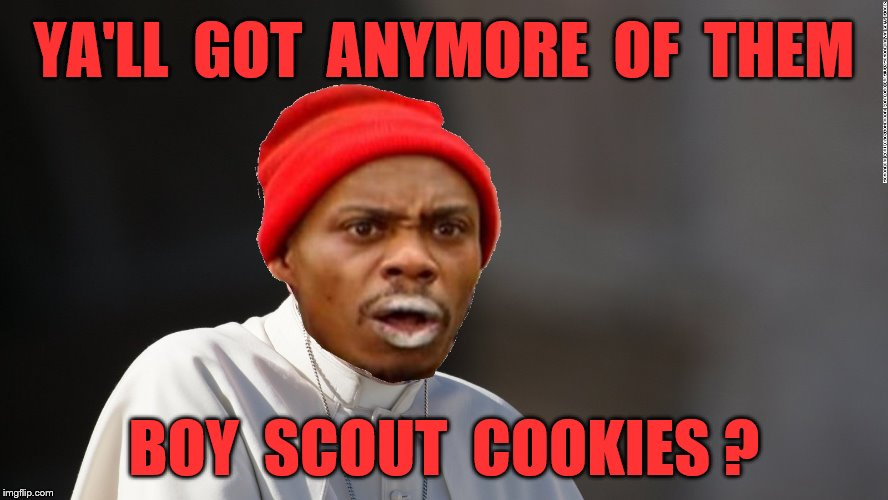 YA'LL  GOT  ANYMORE  OF  THEM BOY  SCOUT  COOKIES ? | made w/ Imgflip meme maker