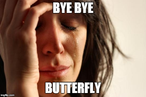 First World Problems Meme | BYE BYE BUTTERFLY | image tagged in memes,first world problems | made w/ Imgflip meme maker