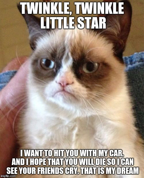 And that is how he lost his driver's license | TWINKLE, TWINKLE LITTLE STAR I WANT TO HIT YOU WITH MY CAR. AND I HOPE THAT YOU WILL DIE SO I CAN SEE YOUR FRIENDS CRY. THAT IS MY DREAM | image tagged in memes,grumpy cat | made w/ Imgflip meme maker