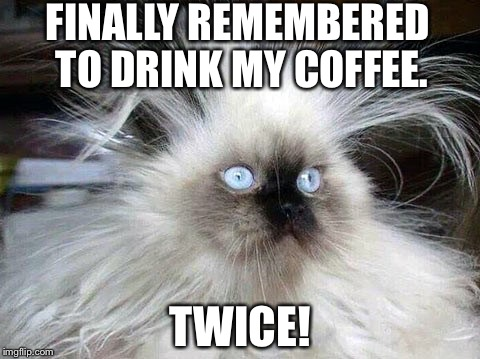 Coffee kitty | FINALLY REMEMBERED TO DRINK MY COFFEE. TWICE! | image tagged in coffee addict | made w/ Imgflip meme maker