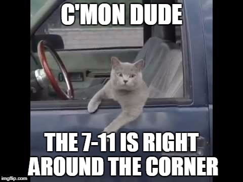 C'MON DUDE THE 7-11 IS RIGHT AROUND THE CORNER | made w/ Imgflip meme maker